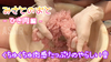 【Misato no Toto】-Ground meat edition-※ Horizontal screen version