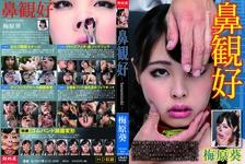 Nose Appreciation -hanamizuki- Susumu Umehara
